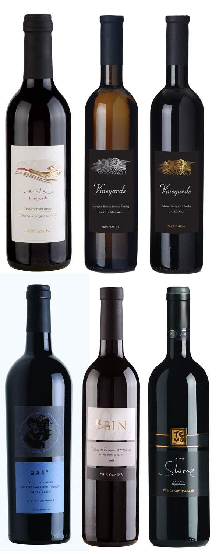 יינות ממותגים | בקבוק יין