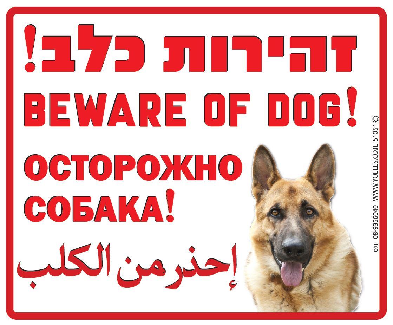 שלט זהירות כלב בעברית רוסית ערבית ואנגלית 25/30 ס''מ. S1051
