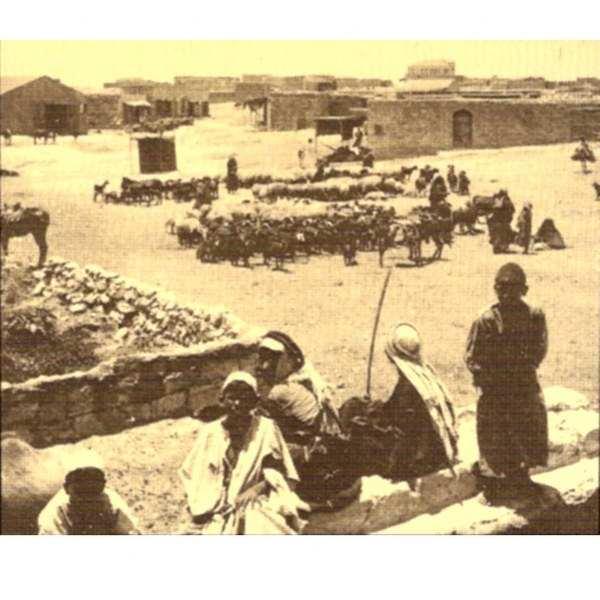 תולדות באר שבע ושבטיה / עארף אל עארף