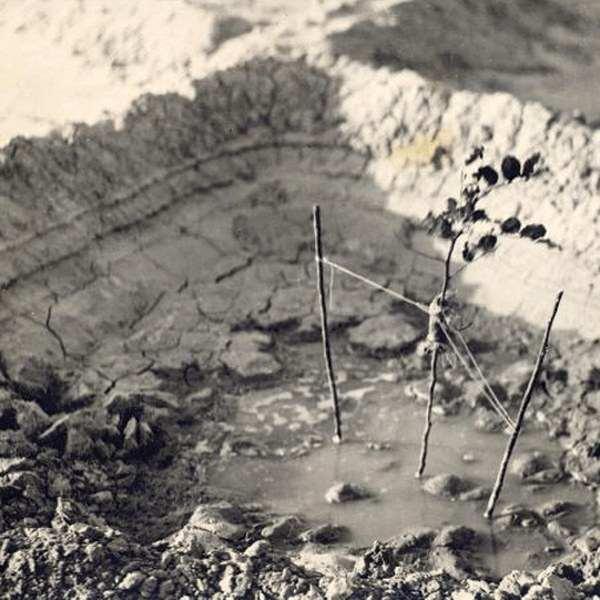 תולדות ההתיישבות החלוצית היהודית בנגב עד לשנת 1948 / רות קרק