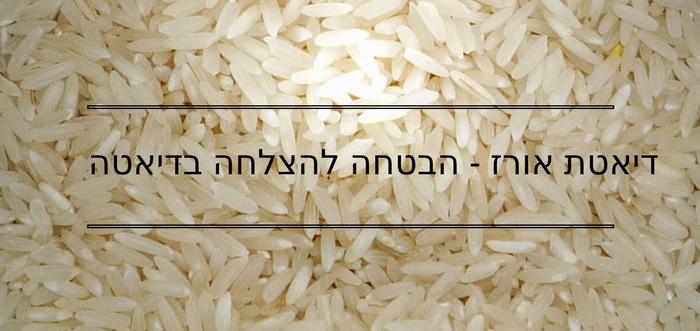 דיאטה אורז-הבטחה להצלחת דיאטה