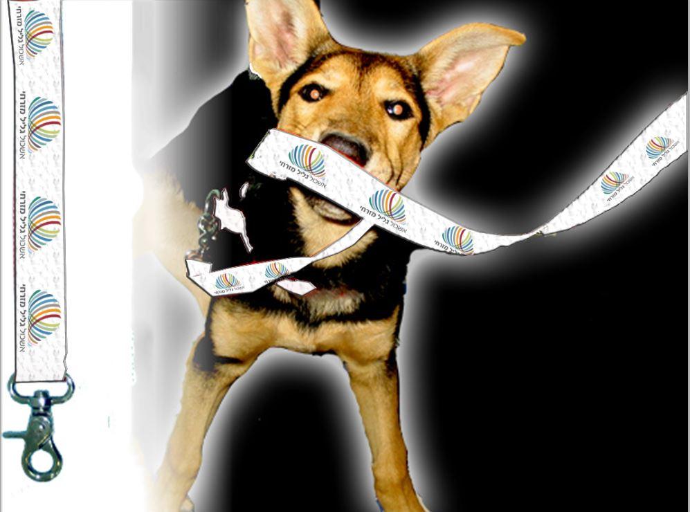 רצועה לכלב | חגורה לכלבים עם הדפס