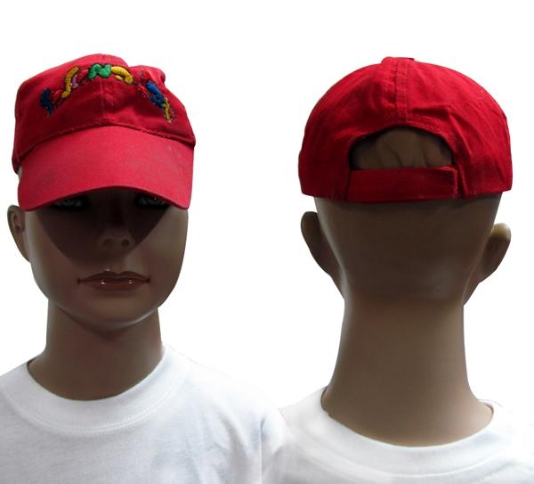 כובעים ממותגים לילדים
