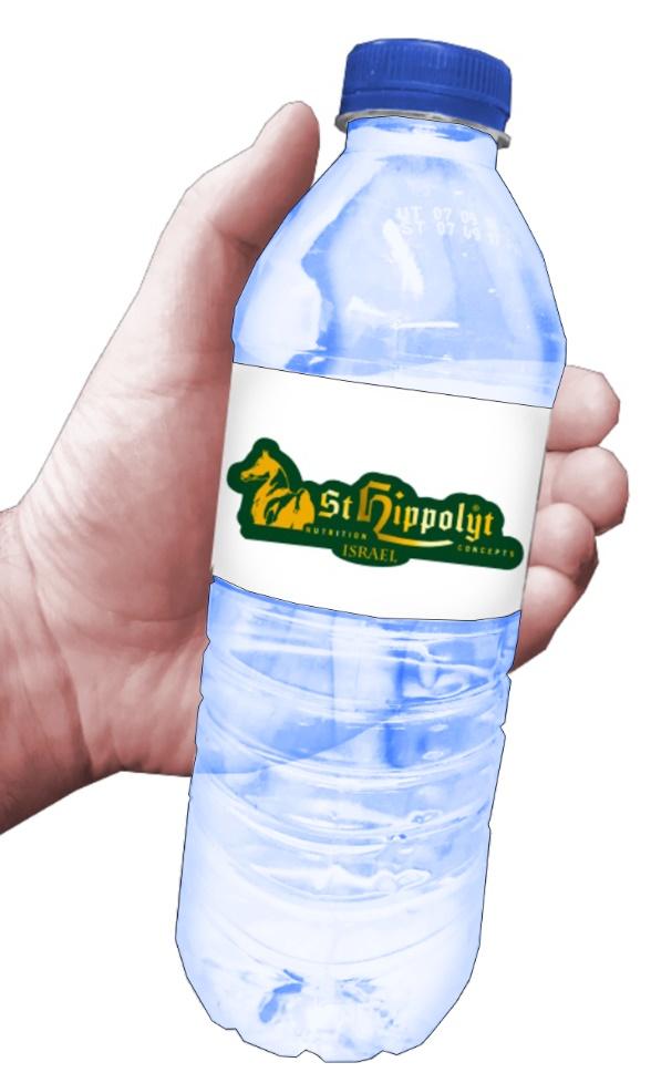 בקבוקי מים ממותגים | בקבוקי מים קטנים