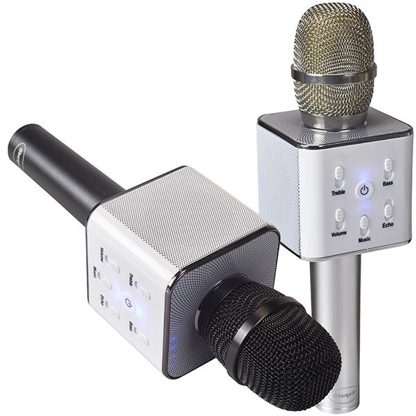 מיקרופון עם רמקול