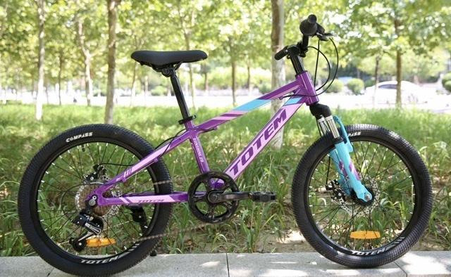 אופני הרים לילדים ונוער 20 Totem Sunshine