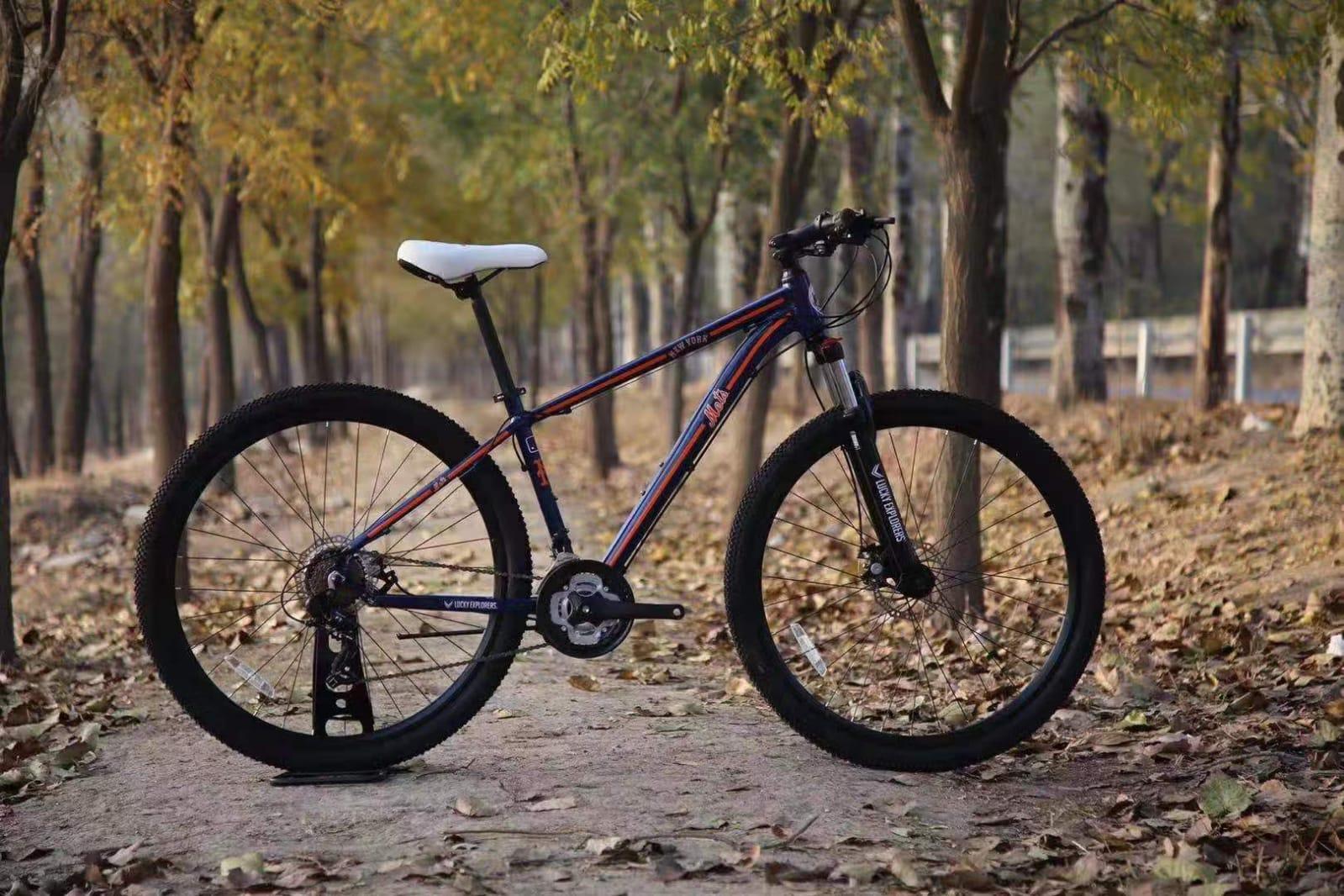 אופני הרים 29 אינצ דיסק מכני