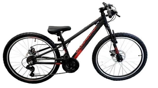 אופני DIAMONDBACK 24 OUTLOOK