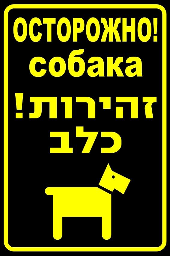 שלט זהירות כלב רוסית/עברית 20/30 ס''מ