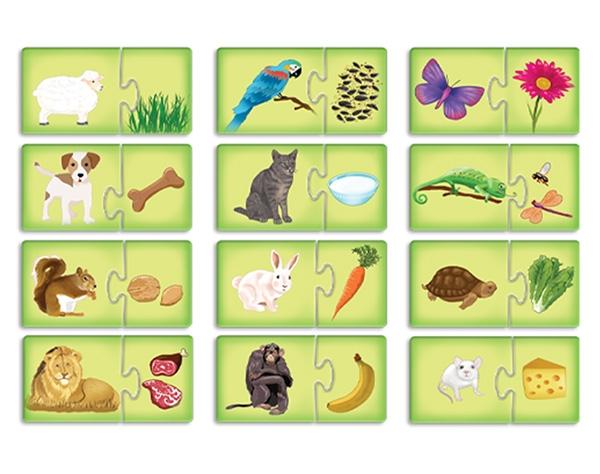 שילובים מגנטיים-מה אוכלות החיות