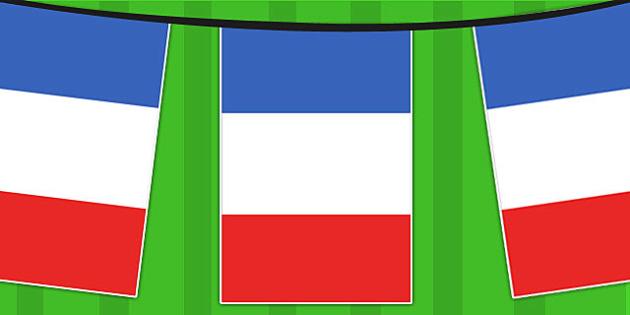שרשרת דגלי צרפת (10 מטר) ניתן להוסיף לוגו לקראת חצי הגמר!