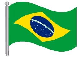 דגל ברזיל -Brazil flag