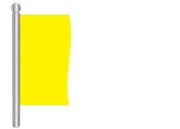 דגל חלק 300X90 במבחר צבעים