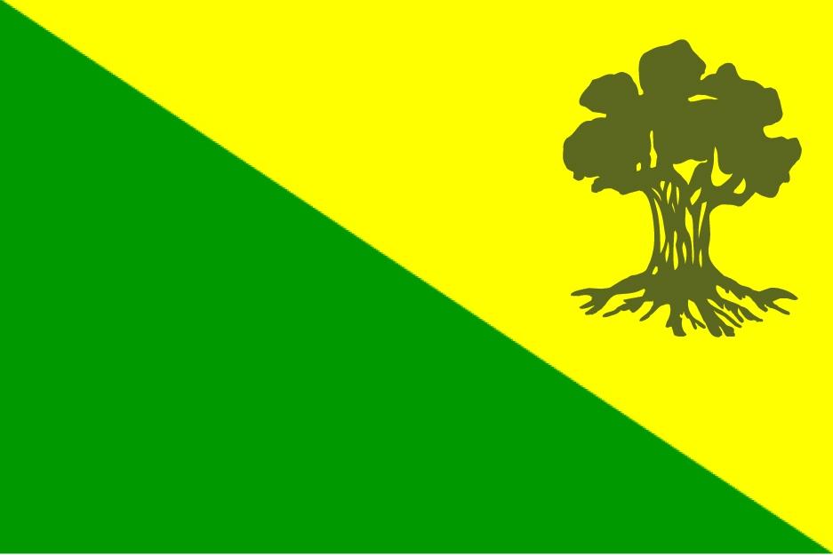 דגל גולני