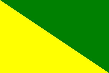 דגל חיל הרגלים