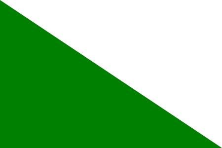 דגל חיל המודיעין