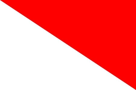 דגל חיל הרפואה