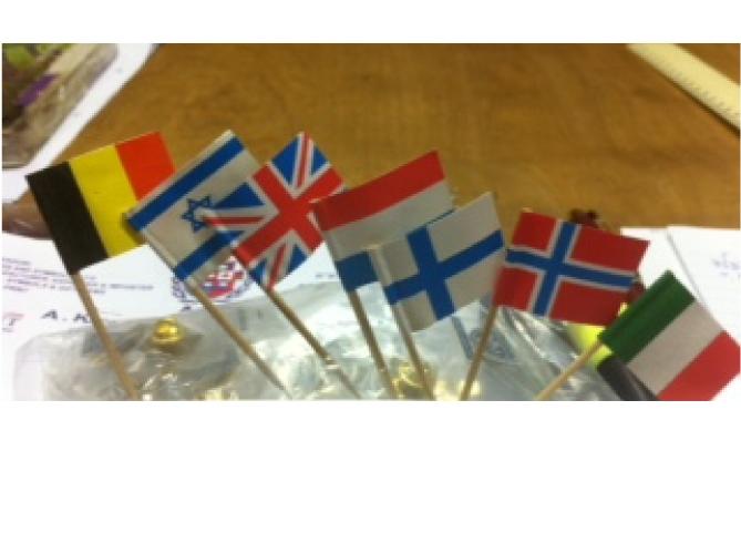 קיסמי דגל ודגלים על שיפוד עץ