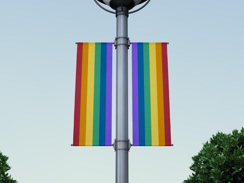 דגל אורך הקהילה הגאה 200*80(ניתן להזמין בכל מידה)