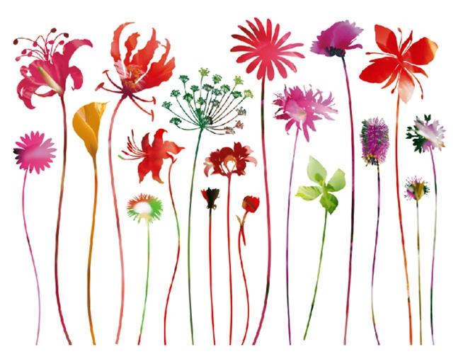 מדבקת פרחים