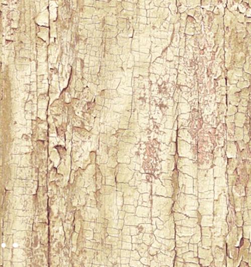 טפט דמוי עץ להדבקה עצמית - Tree Shell