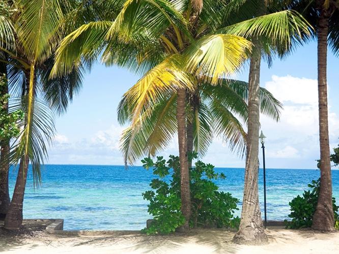 תמונת טפט אי טרופי - Tropical Island