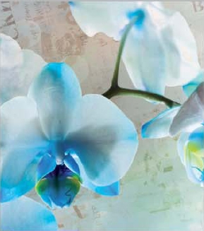 תמונת טפט קטנה לקיר - פרחים