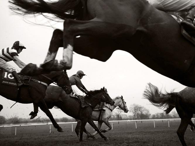תמונת טפט מירוץ סוסים - Horse Racing Black & White