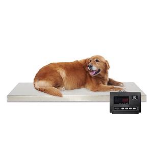 משקל כלבים גדול נירוסטה 120*60