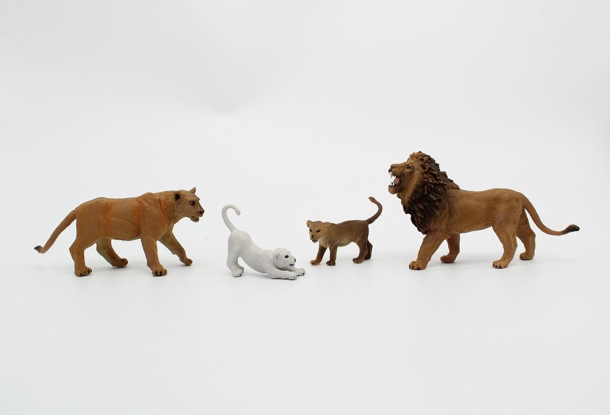 משפחת אריות