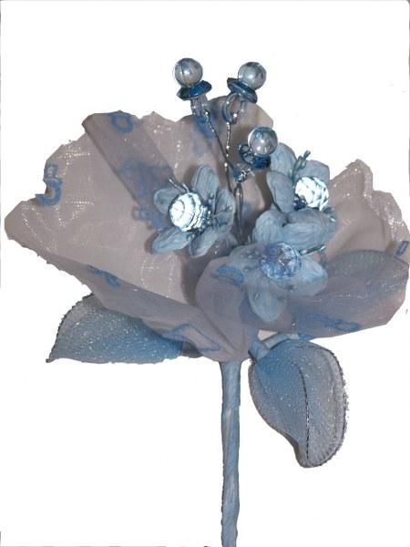 פרח מוציצים תכלת לדרז'ה