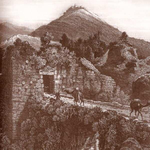 מסע אל העבר, מסה על העבר / נתן שור