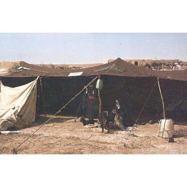 משל, סיפור ואגדה באוהלי קדר / ששון בר-צבי