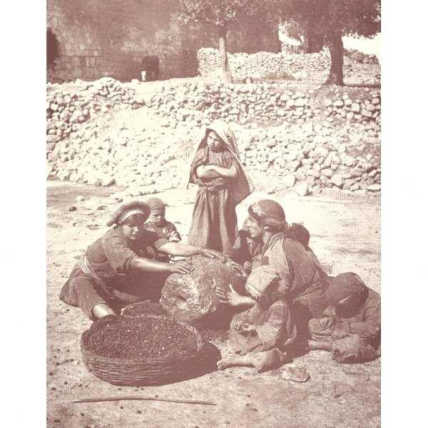 """נופי ארץ ישראל במאה ה-י""""ט והחקלאות הערבית המסורתי - קרדום 34"""