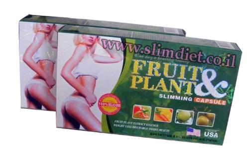 2 בקבוקי fruit&plant
