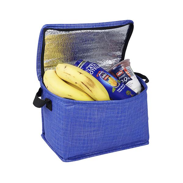 צידנית 6ליטר  דגם Non-Woven Cooler-Bag